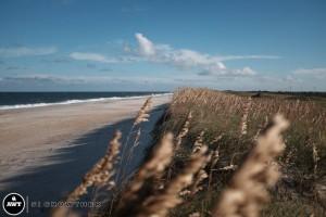 hatteras-dune-line-beach